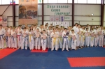 karate-427