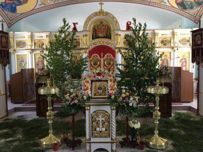 Канун праздника Святой Троицы в Димитриевском храме г. Каменки