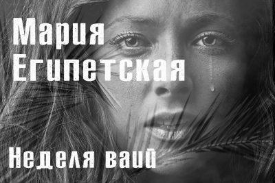 В программе «Свет Православия» продолжается рассказ о символах воскресных дней Великого поста