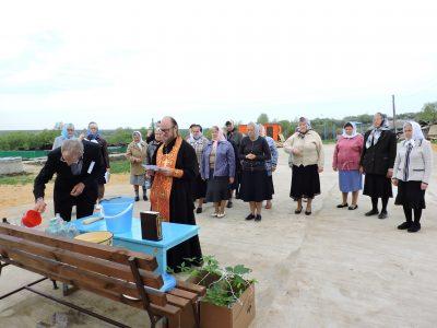 В селе Кочетовка верующие посадили каштаны в память о погибших в Великую Отечественную войну воинах